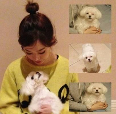 choi daniel jang nara dating With the upcoming kbs drama baby-faced beauty actress-singer jang nara has her first her romantic lead is played by daniel choi (cyrano dating.