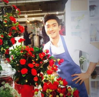 Super-Junior,Siwon