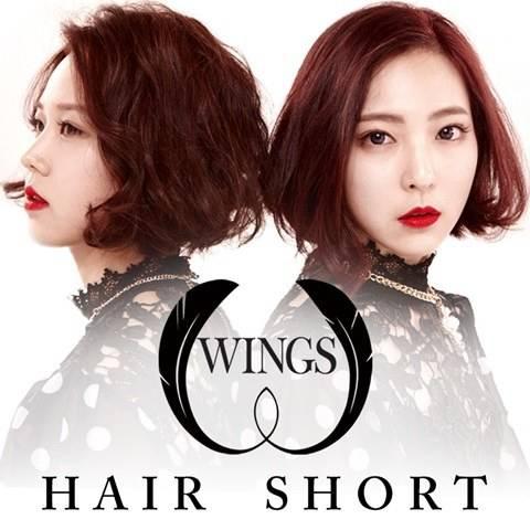 wings_1394589015_af_org.jpg