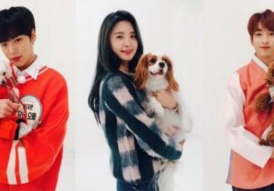 Junghwa,dk,mingyu,jooheon,kim-chung-ha