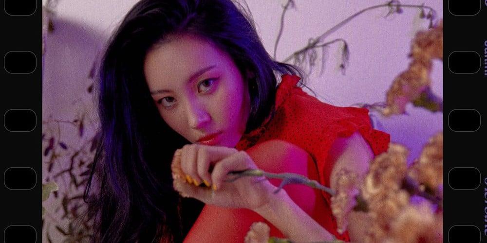 Suzy, Boa, Sunmi, Red Velvet, iKON, Oh My Girl, VAV, Gugudan, Momoland, Kim Chung Ha, Golden Child, MXM, JBJ, Jung Se Woon, Rainz, TRCNG, fromis_9