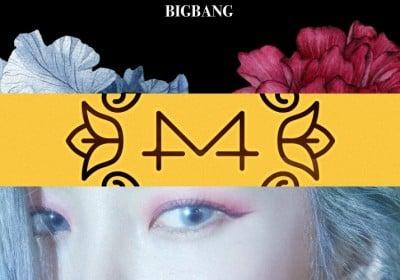 Big-Bang,roy-kim,gaeko,mamamoo,red-velvet,ikon,heize,momoland,kim-chung-ha