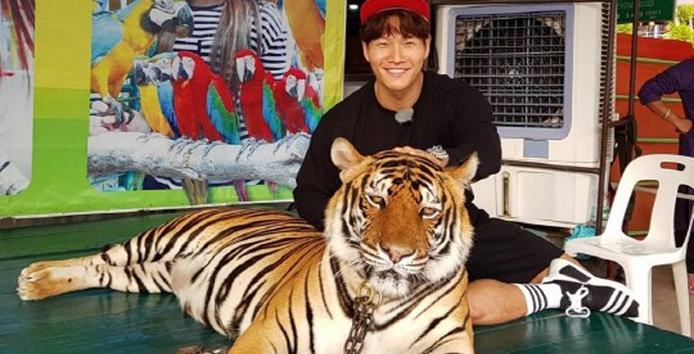 Kim Jong Kook meets a real tiger in Thailand on 'Running Man