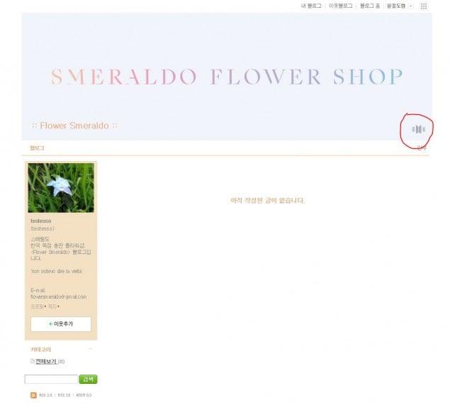 Laman blog Smeraldo Flower Shop