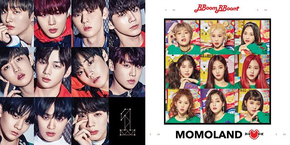 Momoland, Wanna One