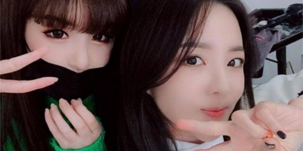 Park Bom, Dara
