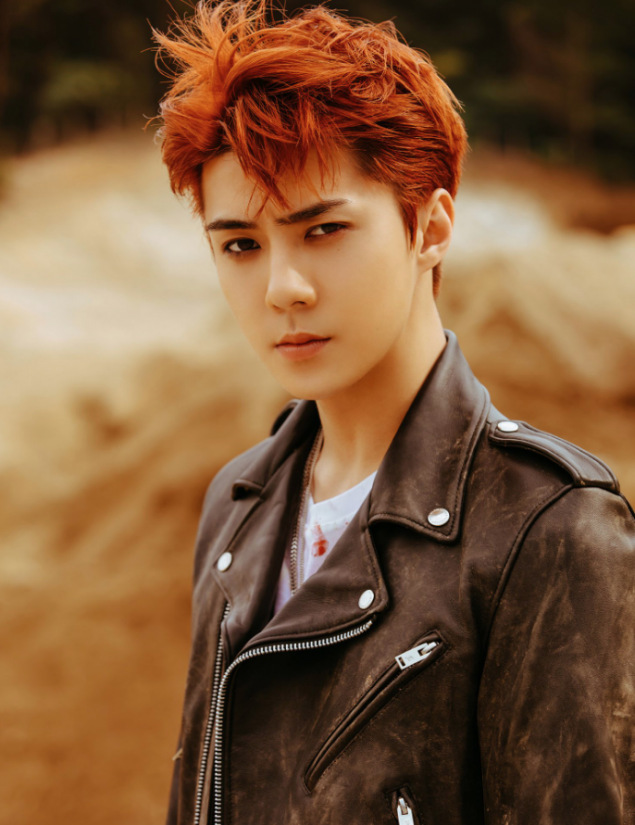 Exo S Sehun Perfects Both Rough And Dandy Look In Don T Mess Up My