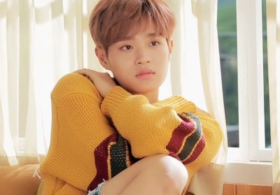 Wanna One, Lee Dae Hwi
