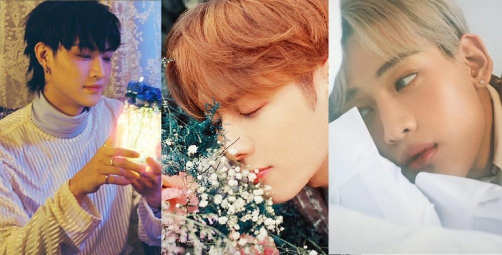 GOT7, JB, Jackson, BamBam