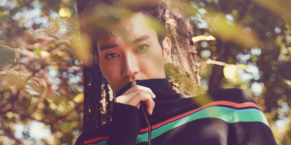 Super Junior, Siwon