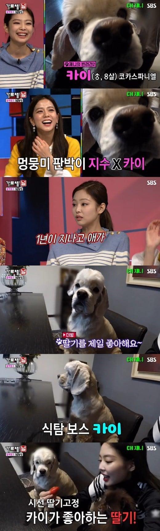 Jennie dan juga anjing peliharaannya