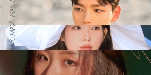 Jang Bum Joon, Crush, Taeyeon, Gummy, Kassy, Whee In, Paul Kim, Sunmi, Punch