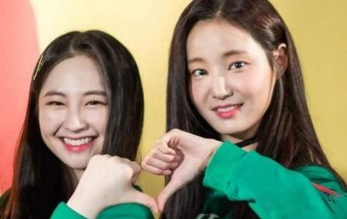Momoland, Yeonwoo, Taeha
