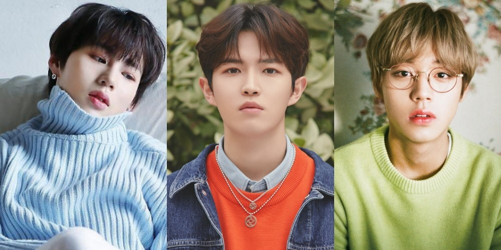 Park Ji Hoon and Ha Sung Woon set to attend Kim Jae Hwan's 'Illusion' concert for support   allkpop