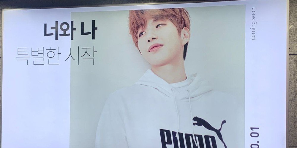 Fans think Kang Daniel is the newest model for 'Puma' in Korea   allkpop