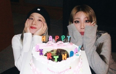 2NE1, CL , Dara