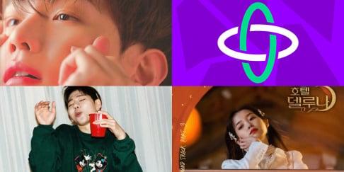 Zico, Baekhyun, Taeyeon, IU, IZ*ONE, MONSTA X, NCT 127, TXT