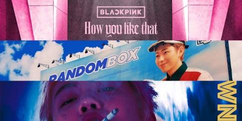 BLACKPINK, Zico, SUGA, Changmo, IU, Jo Jung Suk, Kim Chung Ha, Hwa Sa, Rain, Irene, Seulgi, Sunmi