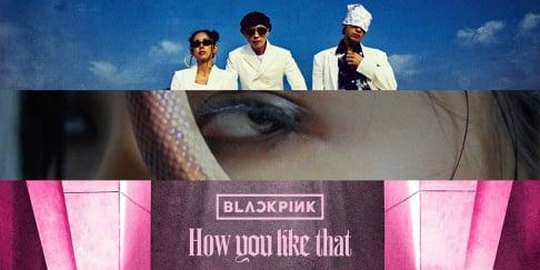 BLACKPINK, Zico, SUGA, Lee Hyori, IU, Lee Hi, MAMAMOO, Hwa Sa, Rain, Yoo Jae Suk, Yoon Mi Rae