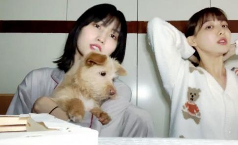 TWICE, Nayeon, Momo