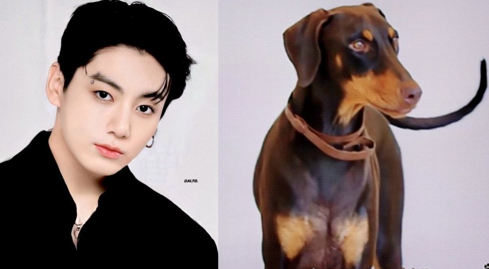 BTS's Jungkook praised highly for not altering his pet Doberman's ears and tail, helping to raise awareness on Animal Welfare