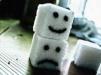salty-sugar