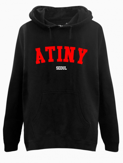 ATINY SEOUL HOODIE - $35